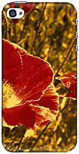 The Racoon Grip printed designer hard back mobile phone case cover for Apple Iphone 4/4s. (floral blo)
