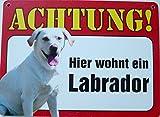 Schild 14x19cm - Hier wohnt ein Labrador weiß Hund Haus Alu Coupon dipond