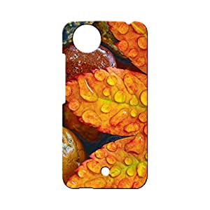 BLUEDIO Designer Printed Back case cover for Micromax A1 (AQ4502) - G5666