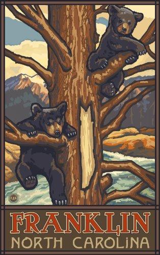 Northwest Art Mall Franklin Zwei Bärenjungen im Baum North Carolina Art Wand von Paul eine lanquist, 11von 43cm