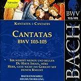 Edition Bachakademie Vol. 33 (Kantaten BWV 103-105)