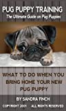 Pug Puppy Training: The Ultimate Guide on Pug Puppies, What to Do When You Bring Home Your New Pug Puppy