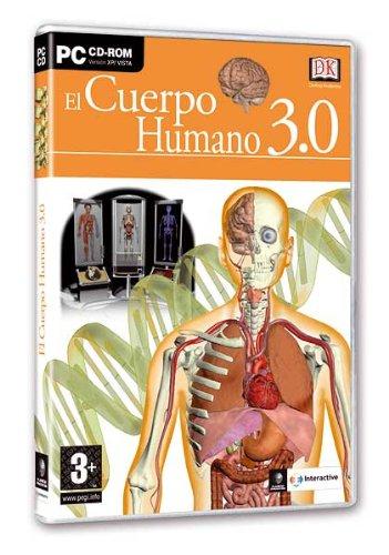 cuerpo-humano-30