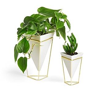 Umbra Trigg Wandvase & Geometrische Deko – Übertopf Für Zimmerpflanzen, Sukkulenten, Luftpflanzen, Kakteen, Keramik…