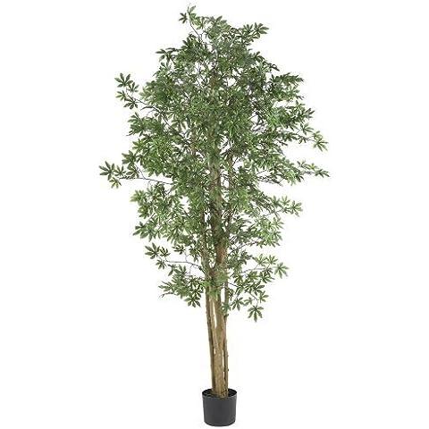 Nearly Natural 5297 Japanese Maple Silk Tree, 6-Feet, Green by Nearly Natural - Maple Silk Tree