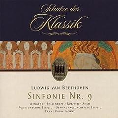 Symphony No. 9 in D Minor, Op. 125: II. Molto vivace