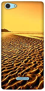 The Racoon Grip By The Beach Gold hard plastic printed back case / cover for Micromax Canvas Selfie 3 Q348