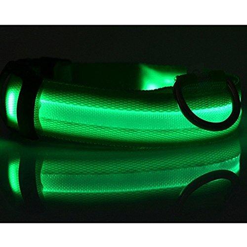 Sijueam Nylon USB Hundehalsband LED Halsband Leuchthalsband mit USB Kabel für Haustier Hunden Grün, L - 4