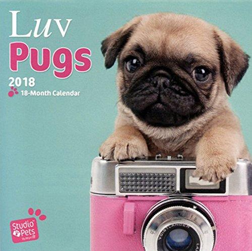luv-pugs-mopse-2018-18-monatskalender-original-myrna-kalender