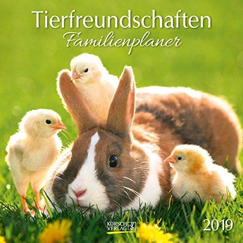 Tierfreundschaften Familientimer 2019. Broschürenkalender: Mit Ferienterminen