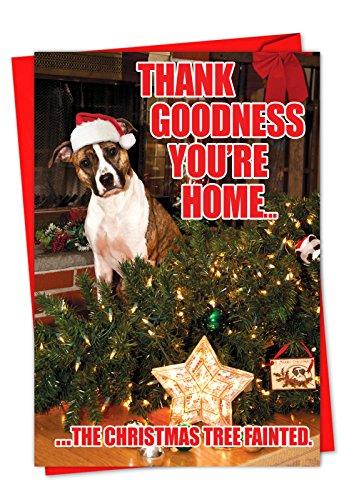 p1144Box Set von 36'Karten Baum ohnmächtig Box Of Christmas' Humorvolle Weihnachten Notiz-Karte mit dankbar Hund besorgt um Weihnachtsbaum Box Set of 36 Christmas Cards (C1144XSG-B36) -