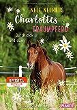 Produkt-Bild: Charlottes Traumpferd 6: Durch dick und dünn