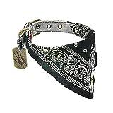 The Walking Dead Daryl Bandana Dog Collar, Large (15