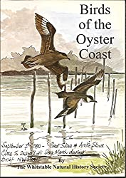 Birds of the Oyster Coast