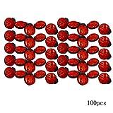 AiSi 100 Stück Kunststoff 3D Marienkäfer Knopf