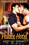 Scarica Libro The Palace Hotel Short Gay Romance by Lamort DeLioncourt 2014 01 30 (PDF,EPUB,MOBI) Online Italiano Gratis