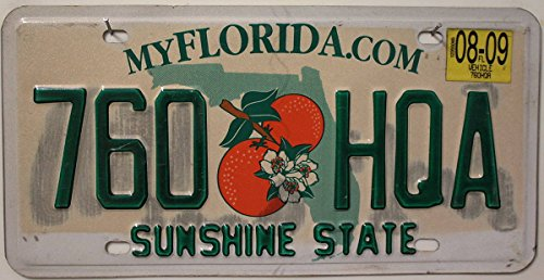 Preisvergleich Produktbild USA Nummernschild FLORIDA °° SUNSHINE STATE °° US Kennzeichen Motiv ORANGEN