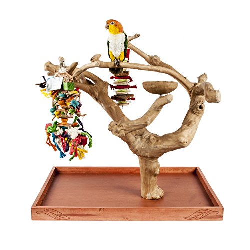 java-mini-tree-carved-base-medium