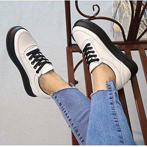 FUFU Scarpe da ginnastica delle scarpe da ginnastica delle scarpe da donna Scarpe da passeggio per la primavera della comodità Casual Outdoor Lace-up Piattaforma per 18-40 anni ( Colore : 1003 , dimen 1003