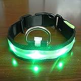 Yosoo Haustiere Hund LED Lichter Blitz Nylon Led Halsband Nacht Sicherheit wasserdichte verstellbare S-XL (Grün, L)