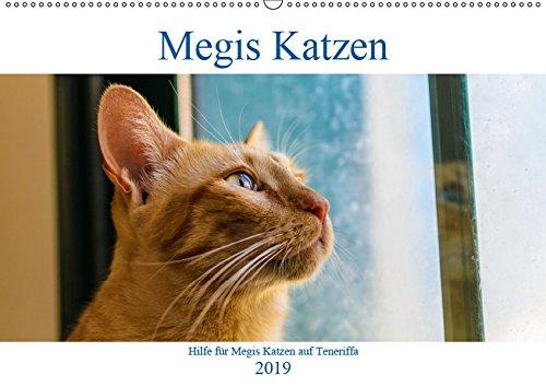 Megis Katzen (Wandkalender 2019 DIN A2 quer): Ein gutes Jahr für Katzenliebhaber (Monatskalender, 14 Seiten ) (CALVENDO Tiere)