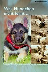 Was Hündchen nicht lernt...: Welpen und Junghunde verstehen, prägen und erziehen