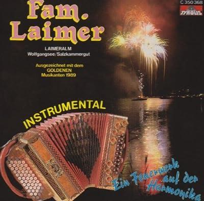 Ein Feuerwerk auf der Harmonika (Steirische Harmonika Instrumental)