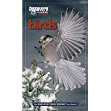 Discovery Channel Birds: An Explore Your World Handbook