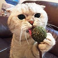 PowerBH Pet Cat Zähne Reinigung behandelt Catnip Lollipop mit organischen Silvervine Stick zum Kauen