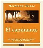 El Caminante / Wandering
