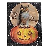 Design Toscano OW46725 Halloween Huhu-Eule Wandbild, Stoff, bunt, 2.5 x 30.5 x 40.5 cm