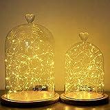 Campana de cristal con forma de cúpula, base de bambú, 2 tamaños, lámpara de cadena luminosa, metal, Regular with lights