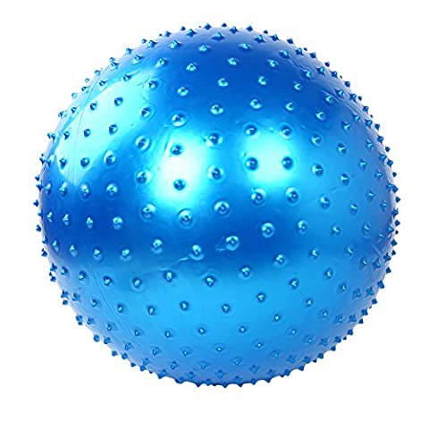 Ezyoutdoor 75cm Exercise Fitness Aerobic Ball for Household Fitness Workout
