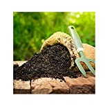 #7: SAPRETAILER All Purpose Enriched Organic Potting Soil for Plants Mix with Organic Fertilizer Compost and Cocopeat Manure for Plant 10Kg
