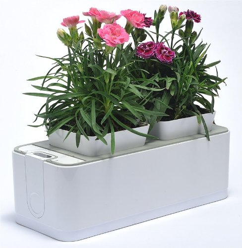 VASO SMART, vaso elettronico intelligente - Smart Mini Garden Smart Herb Garden Indoor Pot - Fragola Grow Kit