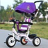 XP Carrozzina-Carrello per Bambini Telaio in Acciaio al Carbonio Titanio Vuoto Ruota Parasole Tendalino Posteriore Bicicletta 1-5 Anni Passeggino,Viola