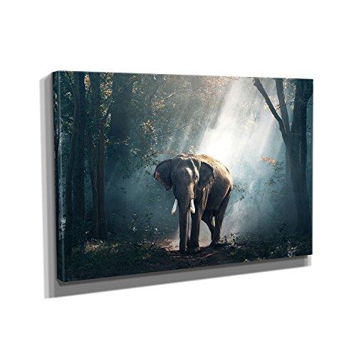 Nerdinger Jungle Elephant - Kunstdruck auf Leinwand (90x60 cm) zum Verschönern Ihrer Wohnung. Verschiedene Formate auf Echtholzrahmen. Höchste (Bilder Verschiedenen Nationalen Kostümen)
