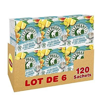 Elephant Infusion Ananas Mangue Orange 120 Sachets (Lot de 6x20 Sachets)