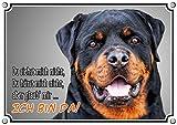 Hundeschild - ROTTWEILER - stabiles Metallschild mit Fotodruck - uv beständig, DIN A3