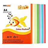 Pigloo Premium A4 Colour Paper for Greet...