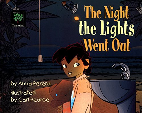 The Night The Lights Went Out by Anna Perera (2006-05-01)