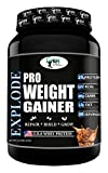 World Nutrition Explode Pro Weight Gainer Powder - (Chocolate) (Chocolate, 1 Kg)