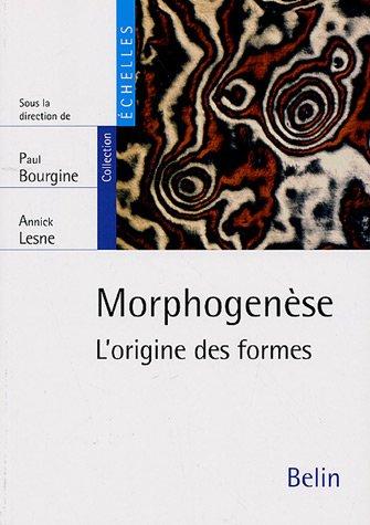 Morphogenèse : L'origine des formes