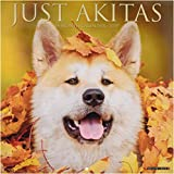 Akitas 2019 Wall Calendar (Dog Breed Calendar)