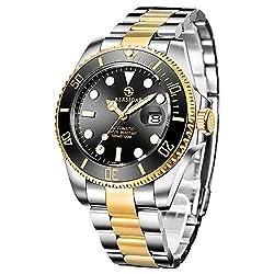 Pagani Design 100 Meter wasserresistente Männer analoge Automatische Uhr mit Edelstahlband (Gold-Schwarz)