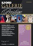ILFORD GALERIE Prestige Raster Silk 290 GSM 24 Zoll - 61 cm x 15,2 m 1 Rolle