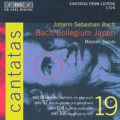 Wo gehest du hin?, BWV 166: Aria: Wo gehest du hin? (Bass)