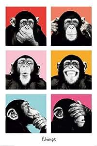 Grande affiche plastifiée Monkey Business Chimps Pop Art Vert Singe Poster Dimensions 91.5 x 61cm (environ)