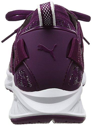 Lo Violet Purple Outdoor Evoknit Multisport white Ignite Dark Femme Puma black Chaussures 1wUqf4nE
