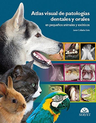 Atlas visual de patologías dentales y orales en pequeños animales y exóticos - Libros de veterinaria - Editorial Servet por Javier Collados Soto